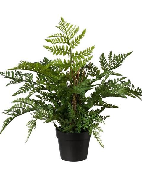 Zelená váza Domo